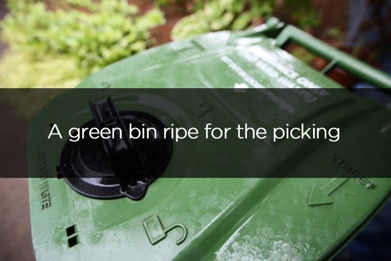 Liddle Rascal A green bin ripe for the picking